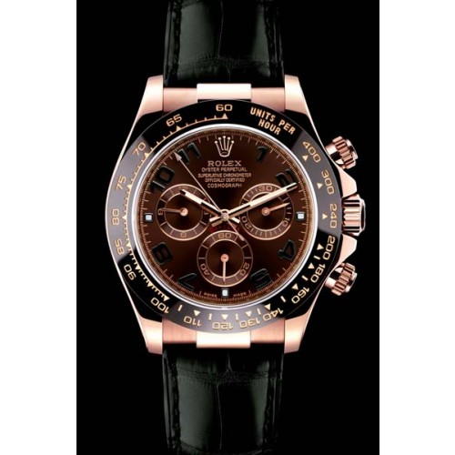 Rolex Daytona Dark Chocolate